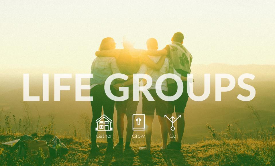 life groups web