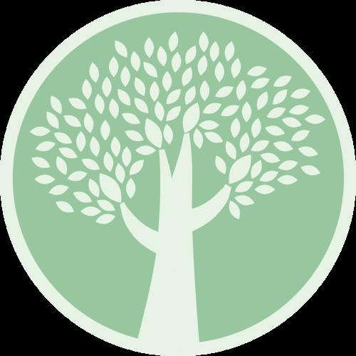 web-logo-nobg
